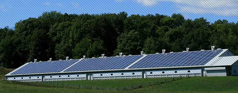 Net metering - send electricity generated from Renewable Energy Technologies (RETs) to the grid